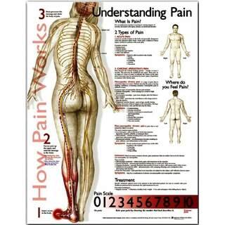Förstå smärta - affisch