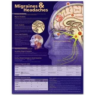 Migrän & Hovepine English Laminered plansch och huvudvärk