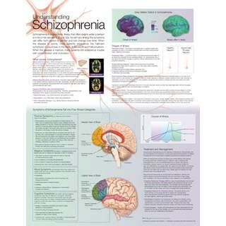 Schizofreni diagnos - plansch