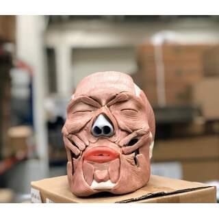 Vuxenkranie med avtagbara ansiktsmuskler i 38 delar