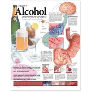 Laminerad affisch på alkoholens skadliga effekter på engelska