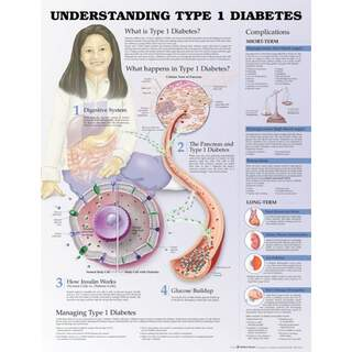 Typ 1-diabetes - Poster / Plansch
