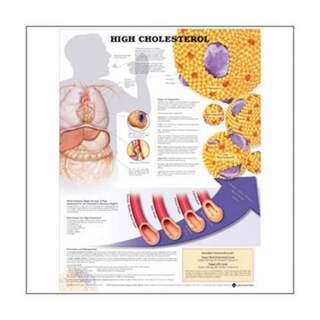 For högt kolesterol laminerad affisch med ringhålen